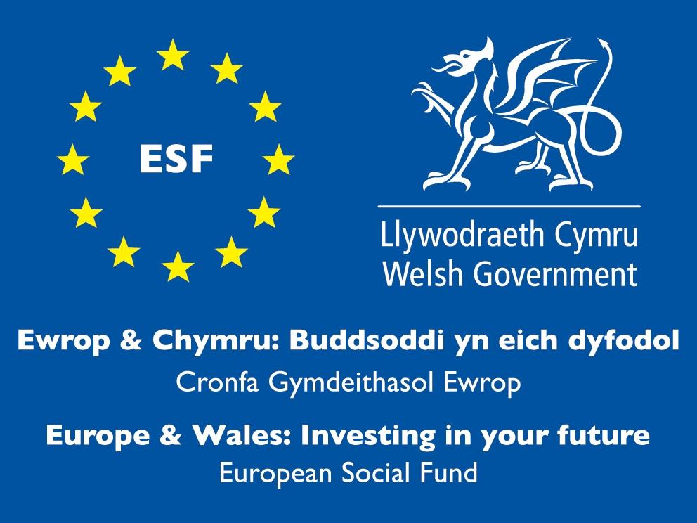 ESF wales logo