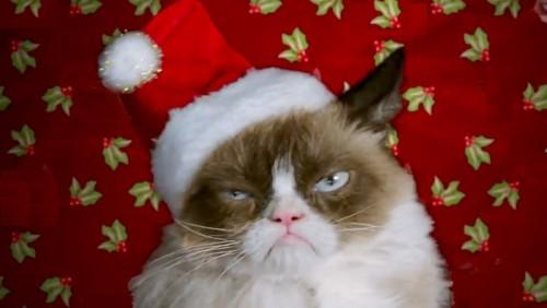 grumpy-cat-final
